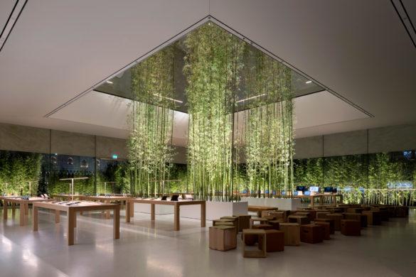 apple store macau foster partners architecture news photos nigel young dezeen 2364 col 1 585x390 - Le nouvel Apple Store de Macao par Foster + Partners, un havre de paix minimaliste où se mêlent technologie, design et nature