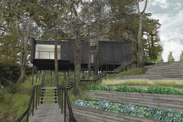 4 585x390 - Tree House, une cabane culinaire perchée au coeur de la Bretagne
