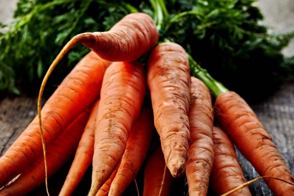 visuels legumes carotte 1 1920x1018 acf cropped 4 585x390 - Les carottes, un ingrédient permettant de rendre le béton plus solide et plus écologique ?